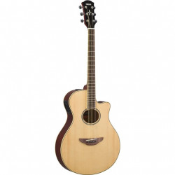 El. Acoustic Guitar Apx600 Natural